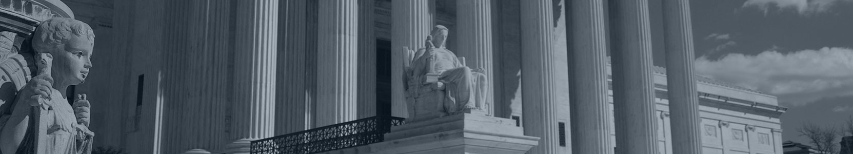 Special Education Law NYC Mayerson & Associates